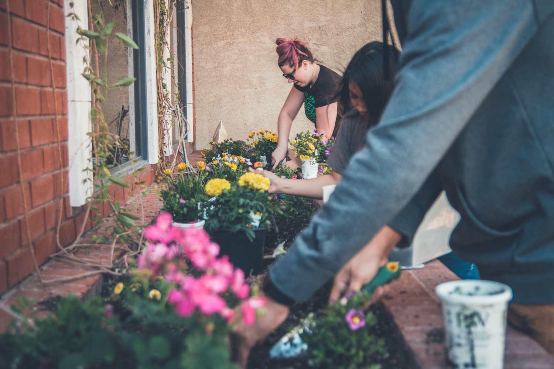 Gewinnbringende Nischen finden - Gärtnern
